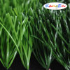 Most Realistic Artificial Grass with Low Price