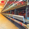 H Type 4-8 Tiers Laying Hen Battery Cages for Chicken Farming