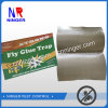 Fly Glue Trap Paper