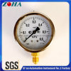 Shock Resistance Manometer with Ss Case Brass Connector Hot Export to North Europe