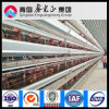 Galvanized Steel Framed Chicken Farm (PCH-7)