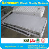 Good Quality Hotel Standard Mattress with Cheap Price