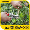 Superior Quality Forged Aluminum Gardening Hand Pruner with Japanese Cutting Blade