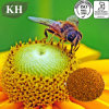 High Quality Organic Fresh 100% Natural Bee Pollen Protein 15%