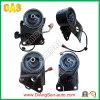Auto Engine Mounting / Automobile Spare Parts for Nissan Car Maxima / Cefiro