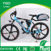 26 Inch Magnesium Wheels Aluminum Frame Importer Electric Bicycle