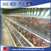 Professional New Design Hot High Quality Automatic Poultry Chicken Bird Cages for Layer Broiler Chicken