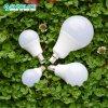 SMD2835 Chip 12 Watt LED Light Bulbs