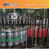 Pet Bottle Juice/Tea Hot Filling Machine