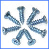 Carbon Steel Self Tapping Screw with Low Price
