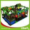 Professional Design Seller Indoor Plastic Playground Equipment