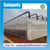 Strongest Galvanized Steel Structure Plastic-Film Greenhouse