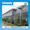 High Quality Tempered Glass Greenhouse for Sale