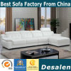 High Quality Modern L Shape Leather Sofa (B. 911)