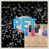 Virgin Pet Granules/Pet Flake/Pet Resin