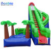 Used Swimming Pool Slide Inflatable Adult Water Slides