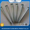 Hot Sale Concrete Steel Nails