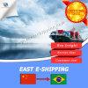 Professional Sea Freight Service From China to Rio De Janeiro