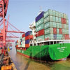 Shipping Company in Foshan, China