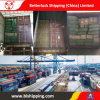 From China to Uzbekistan Bukhara Railway Cargo Transportation Sea Freight