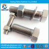 High Quality Stainless Steel Fine Hex Cap Screw with Nut