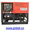 Premium Generating Set 10kw (ATS1080)