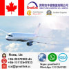 Air Cargo Shipment with Competitive Rate From China to Vancouver, Bc&Toronto, on&Montreal, QC&Edmonton, Ab&Calgary, Ab&Winnipeg, MB of Canada