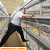 Galvanized Automatic 4 Tier Battery Meat Chicken Feeding Cage for Poultry Fram/ Farming Meat Broiler Raising Equipment