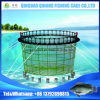 Tilapia Fish Farming Floating Eco-Friendly Circle Shape Fish Farming Cage in China