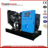 40kw AVR Diesel Genset for Slaughter House