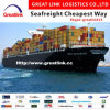 Cheapest Sea Freight Professional Logistics From China to USA (west /east coast)