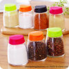 Fashion Spice Bottle/ Pepper/Salt Shaker/Spice Jar with Plastic Lid