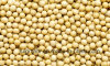 Dry Yellow Soy Beans