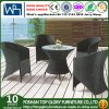 Outdoor Leisure Furniture Dining Chair Wicker Set (TG-508)