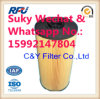 Fuel Filter Auto Parts for Hitachi with Import Filter Paper (4679981, 8-98074288-0)
