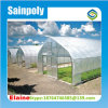 Light Deprivation Agricultural Singel Tunnel Greenhouse for Sale/Invernadero Ecomomico