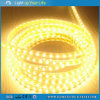 Sunrain LED Strip Light IP44 100m/Roll 220V