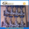 Dn80 Stainless Steel 316 Globe Valve for Steam
