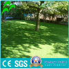 Wholesale Landscaping Soccer Field Royal Turf