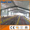 Factory Environment Control Shed Broiler Poultry Farming Equipment with Free Design
