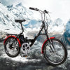 New Style 250W Electric City Ebike with Rear Disc Brake