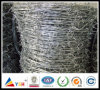 Galvanized and Stainless Steel Barbed Wire (20years factory)