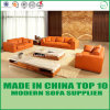 Modern Office Furniture Set Leisure Wooden Sofa with Feather