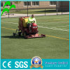 Chinese Suppiler of UV-Resistance Natural Looking Garden Synthetic Grass
