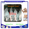 Factory Provide Hot Sale Weight Loss Powder Sibutra HCl