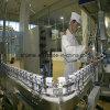 Milk Plant Dairy Equipment Turn Key Project