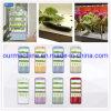 Top 5 Manufacturer Full Spectrum LED Grow Light Lamp Plant Growing Light Cabinet