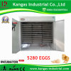 CE Certified 5280 Eggs Energy Saving Automatic Incubator (KP-25)