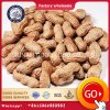 Grade AA Grade and Food Use Raw Peanuts in Shell