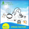 Customized High Temperature Resistance Spring with Fast Delivery